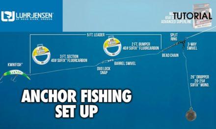 The basic set up for Anchor Fishing: Luhr-Jensen® TECH TIPS