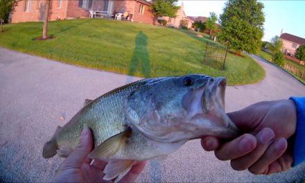 Beast Coast Miyagi Swimmer Catches Big Bass