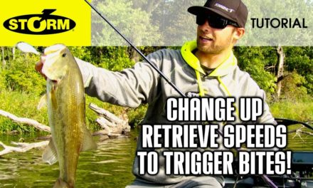 Changing retrieve speeds on crankbaits: HOW TO FISH