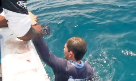BlacktipH – Fisherman Pulled Overboard by Giant Fish – ft. kanalgratisdotse