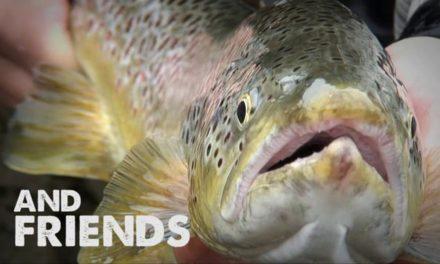 Dan Decible – Scandinavian Fly Fishing – Frontsidefly.com