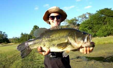 Flair – Bass Fishing NEW Ponds for BIG Bass – Tips and Catches