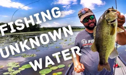 FlukeMaster – Bass Fishing in Unknown Places – How to find fish fast – La Crosse Wisconsin – Mississippi River