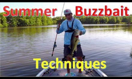 Best Buzz Bait Trick EVER? – Summer Bass Fishing on Rainy Days