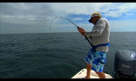 Addictive Fishing | Big Game Fishing for Goliath Grouper off Port Canaveral Florida