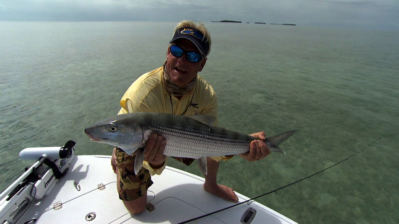 Addictive fishing bonefish fishing the flats in downtown for Islamorada florida fishing