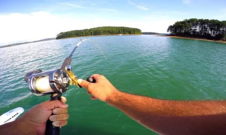 Flair – Catching THREE Fish at ONE Time!!!