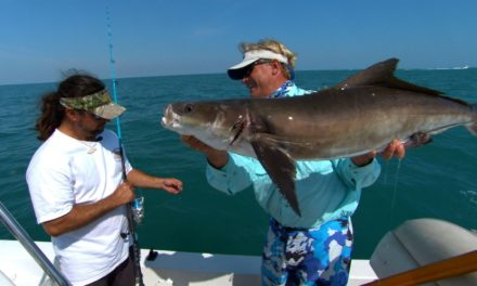 Addictive Fishing | Cobia Fishing – Big Game Fishing off Cocoa Beach Florida with Capt Scott Lum