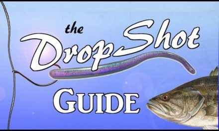 DROPSHOT Guide – The Most Effective Rig in Bass Fishing