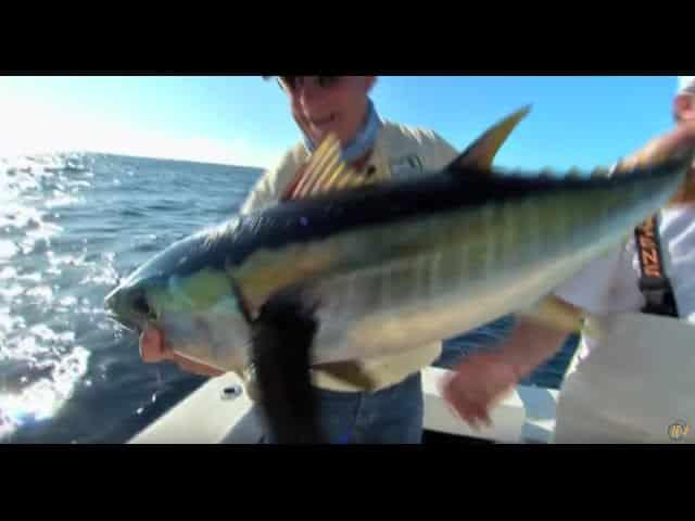 Addictive fishing deep sea fishing venice la sportsman for Deep sea fishing la