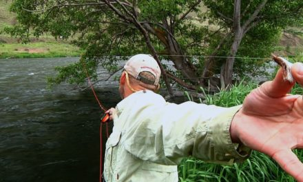Deschutes River Fly Fishing by Todd Moen