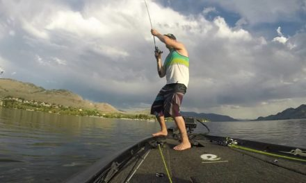 Enigma Fishing – South Okanagan Bronzebacks