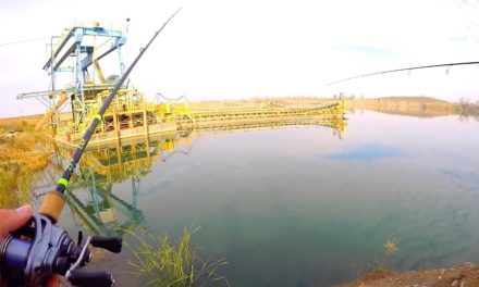 Flair – Fishing in a California GOLD MINE?!?!