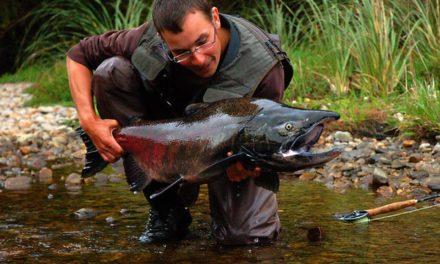 Dan Decible – Fly fishing in New Zealand