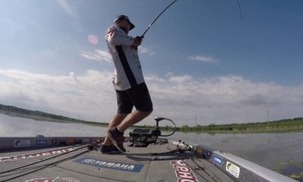 GoPro: Tharp in the salad at Cayuga