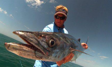 Grouper Fishing Kingfish and Permit Fishing videos in Boca Grande Florida