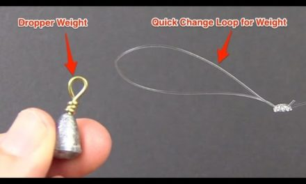 How To Tie A Dropper Loop Knot [Fast & Easy]