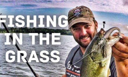 FlukeMaster – How to Fish a Chatterbait in the Grass – Bass Fishing in the Summer