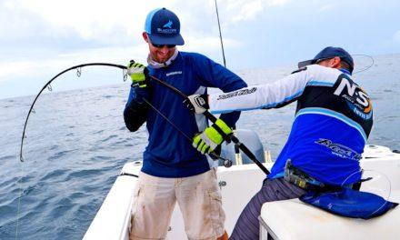 BlacktipH – Monster Grouper Spinning Tackle Fishing Challenge