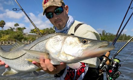 BlacktipH – Multi-Species Wade Fishing on the Indian River – 4K