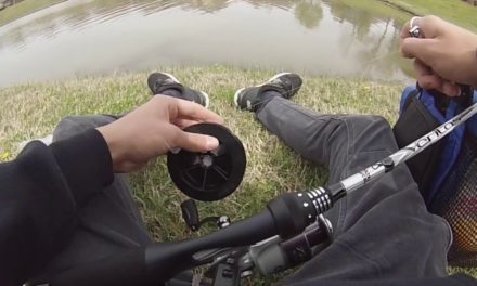 Multispecies Dropshot Fishing