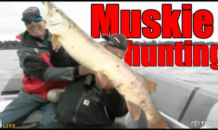 Muskie hunting on Bass LIVE with Dave Mercer and Davy Hite