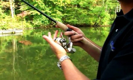 – Preventing Line Twists on Spinning Reels When Bass Fishing