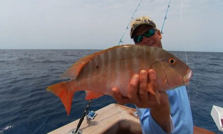 Addictive Fishing | Snapper Fishing and Grouper Offshore Fishing in Bimini Bahamas