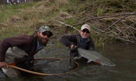 Dan Decible – Steelhead Fly Fishing Trip: Olympic Peninsula Washington
