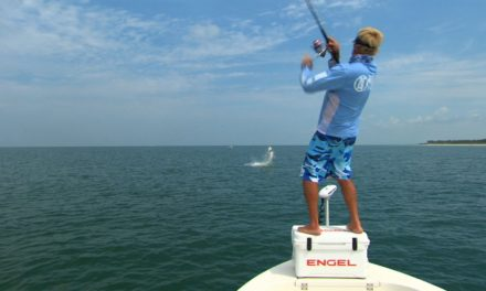 Tampa Florida Beach Tarpon Fishing on Light Tackle with Capt Tommy Z