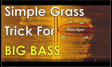 The Secrets of Offshore Grass Fishing REVEALED!!!- Summer Bass Fishing Tricks