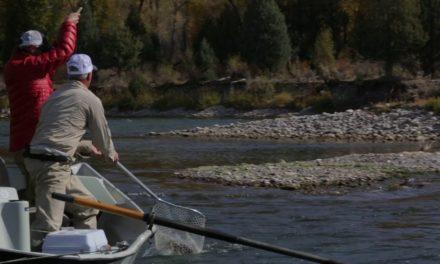 Dan Decible – The Teton Valley Fishing Experience