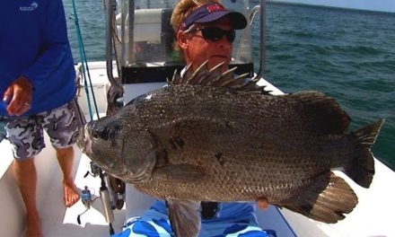 Addictive Fishing   Tripletail Fishing the Buoy Line off St Augustine Florida