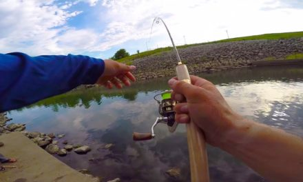 Lunkers TV – Using ULTRA Light Tackle for Big Fish!!