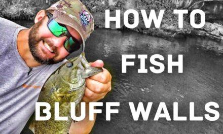 FlukeMaster – 🎣 Bass Fishing – How to Fish Bluff Walls 🎣