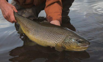 Dan Decible – Tørt Fly Fishing Iceland Teaser (HD, English)