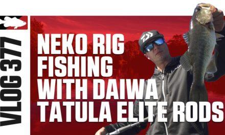 Brent Ehrler Neko Rig Fishing with Daiwa Tatula Elite Casting Rod on San Vicente – TW VLOG #377