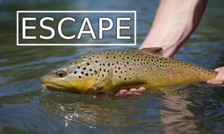 Dan Decible – Escape – Utah Fly Fishing