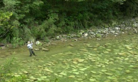 Dan Decible – Fly Fishing DownUnder