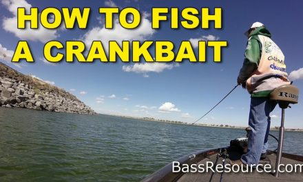 How To Fish A Crankbait   Bass Fishing