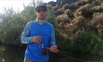 How to Catch Bass on Poppers – Fly Fishing for Bass