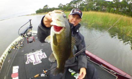 LakeForkGuy – Largemouth Bass Eats Frog Instantly!
