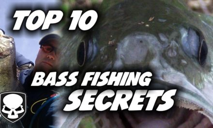 Top 10 Bass Fishing Tricks – for beginners – 2017 – Tips and Tricks for Catching Bass