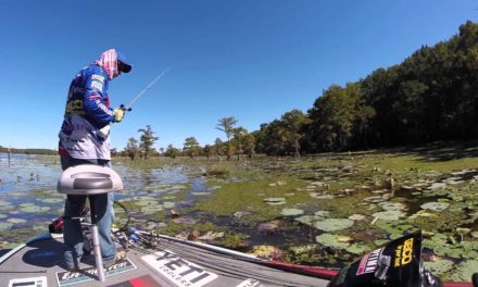 MajorLeagueFishing – When you are fishing for Bass and you get an alligator!