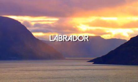 Dan Decible – A Fly Fishing Journey Through Labrador