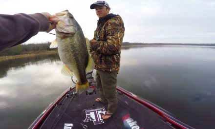 Lunkers TV – Attacked by CRAZY bees while bass fishing