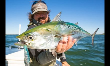 The Obsession of Carter Andrews – Cape Cod False Albacore Preview – Episode 304