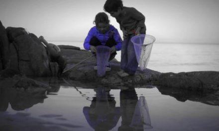 Dan Decible – Fathers Day fishing