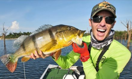 LakeForkGuy – Fishing Peacock Bass in the Amazon pt.1 | AWESOME Topwater Strikes!