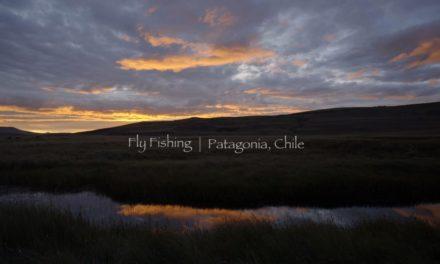 Dan Decible – Fly Fishing / Patagonia, Chile
